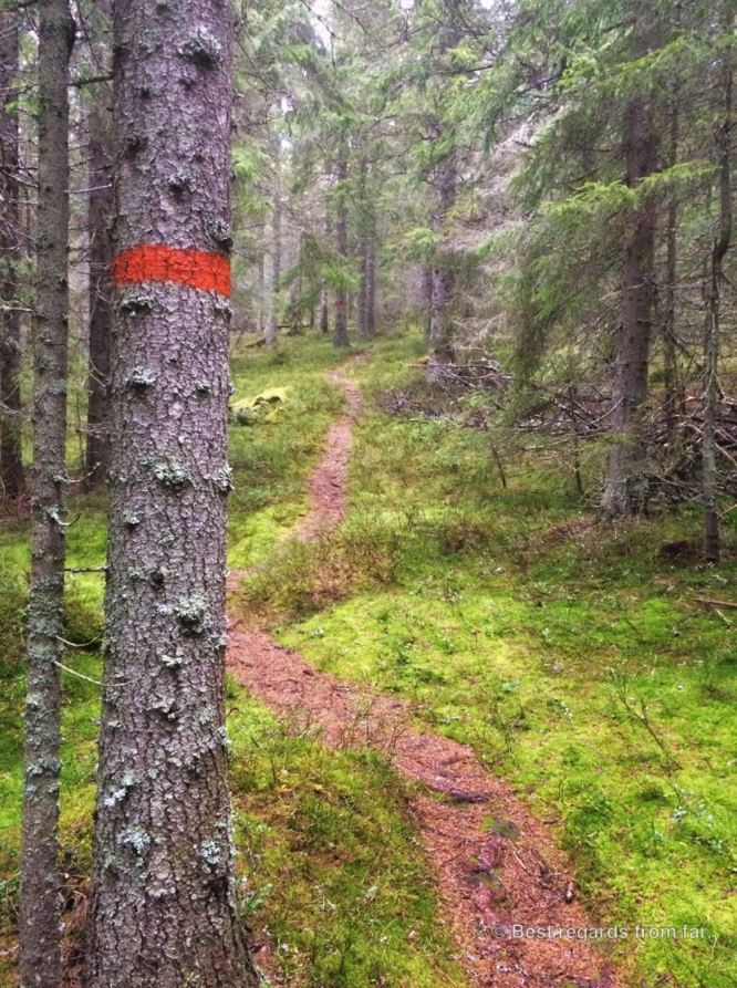 The High Coast (Höga Kusten) trail, Sweden