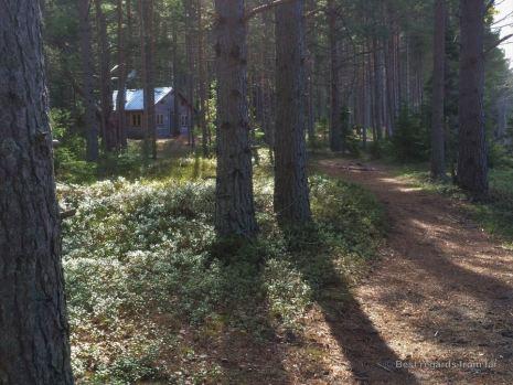 High Coast trail stugas: Tärnättholmarna Stuga