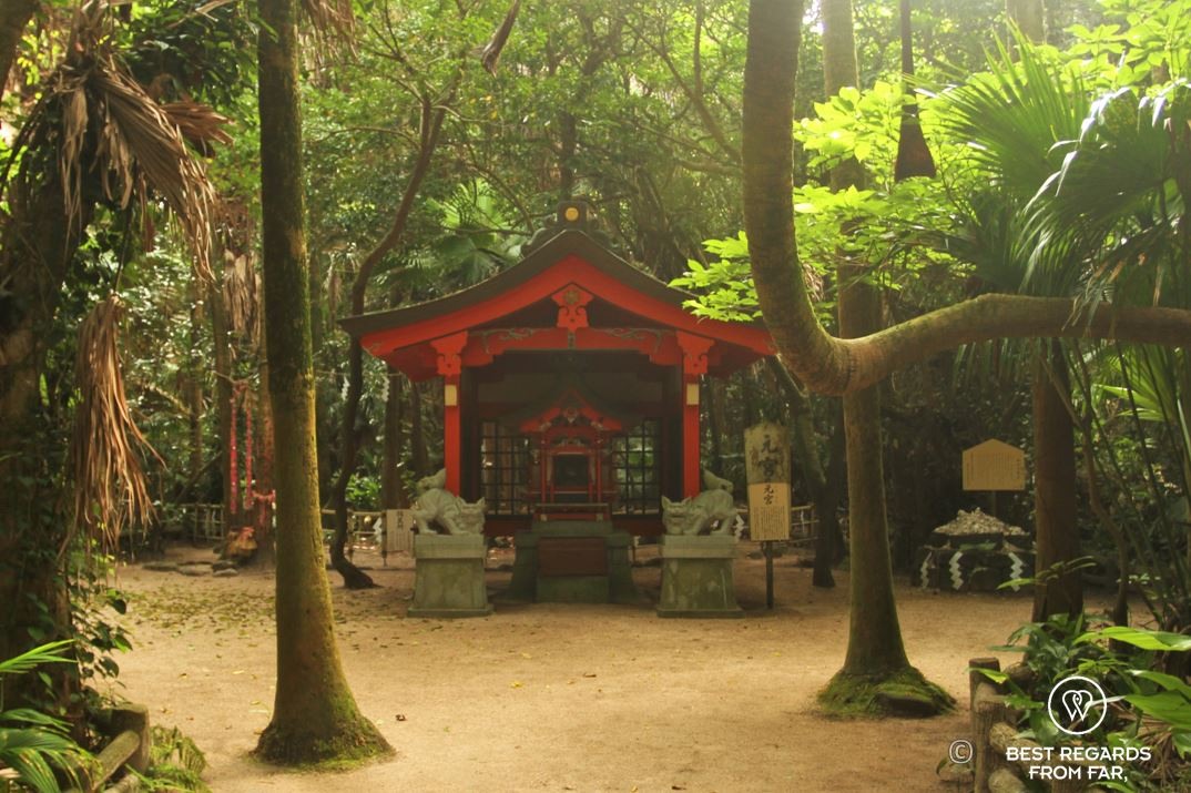 Aoshima Shrine, Kyushu Island, Japan.