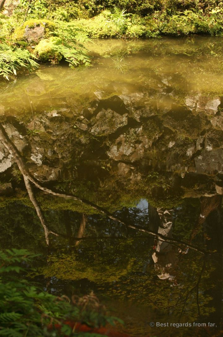 Delicate reflection of a gardener monk in the pond in Koke-dera, the temple of moss, Kyoto.