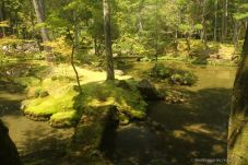 Kokedera: the central pond