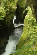 The erosion by the Gokase-gawa river keeps digging the Takachiho gorge