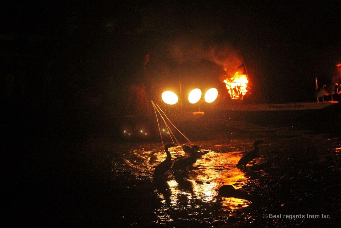 Ancient tradition of cormorants fishing (ukai) in Japan: fishermen and cormorants by night.