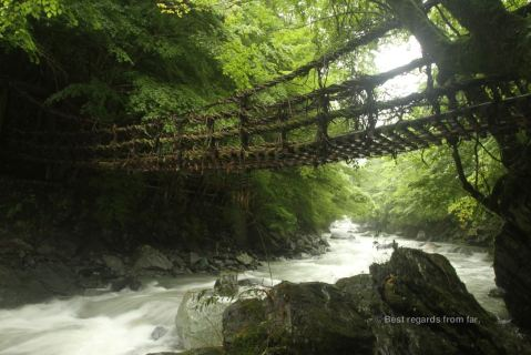 A vine bridge above a wild torrent in a lush forest on Shikoku Island, Japan.