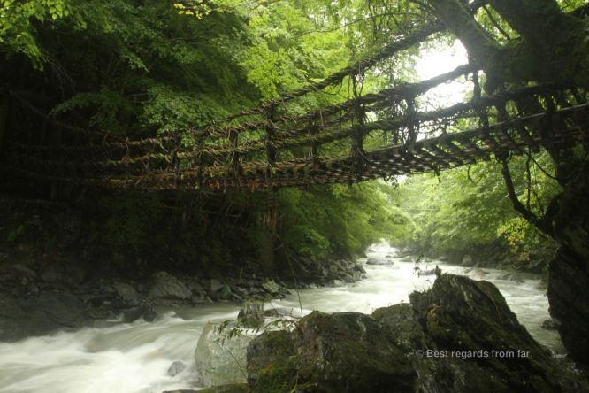 Vine bridge over roaring waters