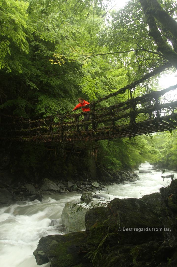 Hiker crossing a vine bridge above a wild torrent in a lush forest on Shikoku Island, Japan.