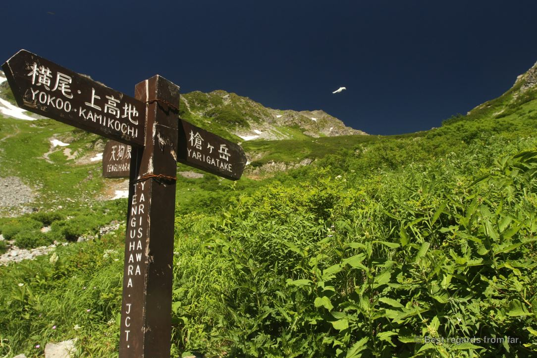 A trail marker while hiking the Japanese Alps.