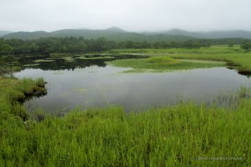 One of the five lakes on the Shiretoko Peninsula, Hokkaido.