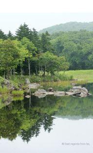 Trees reflecting in a lake in the Shiretoko National Park, Hokkaido, Japan.