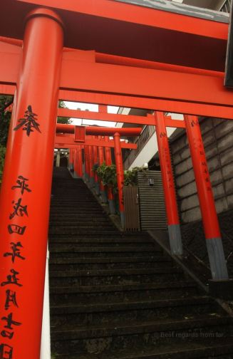Torii leading to an unexpected shrine in Nagasaki.