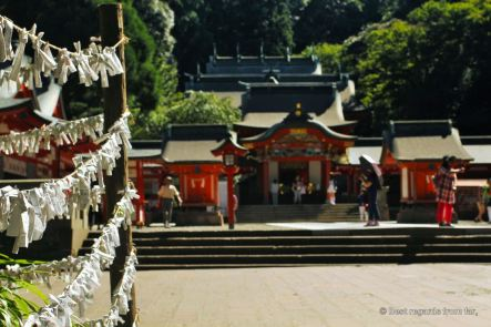 Fortunes (Omikuji) are knotted and left at the shrine when they are bad luck.
