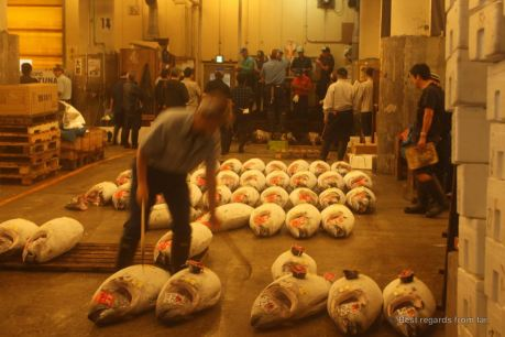 Dealing the tunas