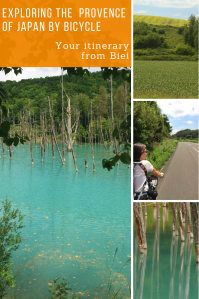 Blue pond in Hokkaido with dead trees. Woman riding a bicye on an empty road. Green fields.