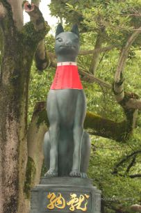 Fushimi Inari Taisha, the fox guarding this scared place
