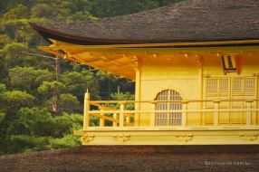 Close up of the golden pavilion in the sunlight
