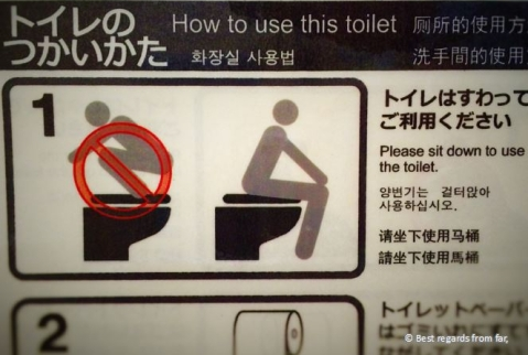 Instructions on Japanese toilets.