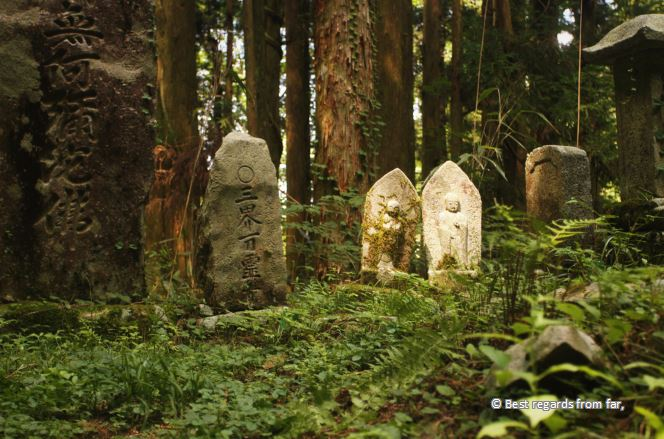 Stone ornaments with Japanese characters in a forest.