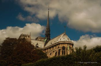 Notre Dame rising above the trees