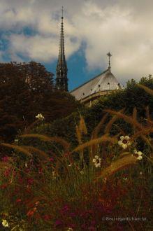 Notre Dame de Paris from the square Jean XXIII