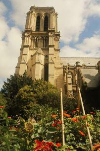 Notre Dame de Paris from the park