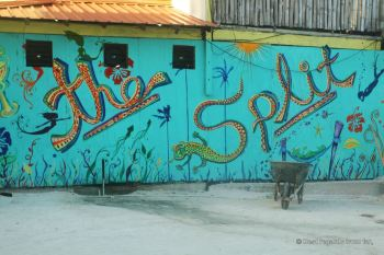 Lazy Lizard at the Split, the spot to be, Caye Caulker, Belize