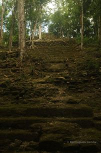 The top structure of the massive pyramid of La Danta, El Mirador, Guatemala