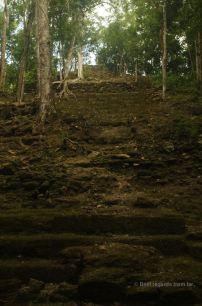 The top structure of the massive pyramid of La Danta, El Mirador, Guatemala