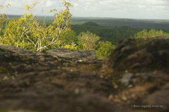 El Tigre from the top of La Danta, El Mirador, Guatemala