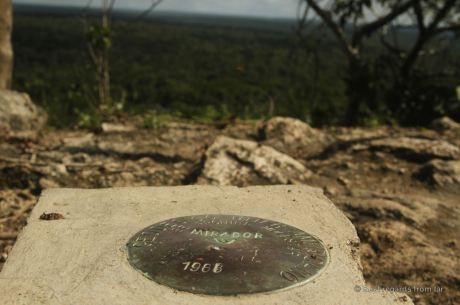 The jungle surrounding La Danta, the highest pyramid of El Mirador, Guatemala