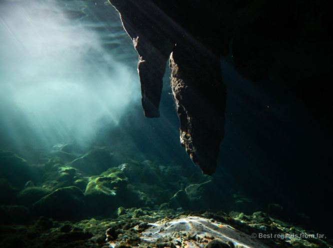 The crystalline waters of the cenotes