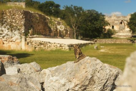 A local, with the ball court and the Quadrangle of the Nuns in the background, Uxmal, Mexico