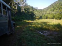 US school buses get a second life in the jungle of Belize