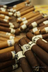 New cigars being tasted, Drew Estate, Esteli, Nicaragua