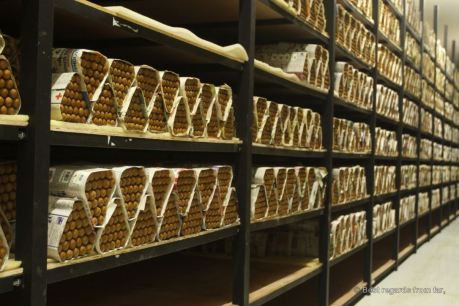 Cigars will be stored for 60 to 90 days in a climate-control room, Drew Estate, Esteli, Nicaragua