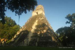 The morning sun on Temple I, Tikal