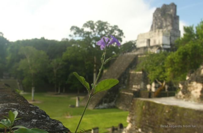 Temple II, Tikal, Guatemala