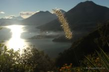 Lake Atitlan with volcano Fuego erupting in the background, Guatemala