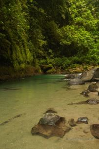 The trout-filled fresh waters of La Fortuna waterfall in Costa Rica