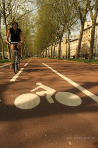 Bike lanes of Versailles lined up with its typical buildings