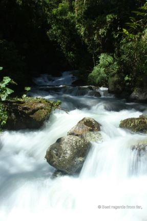 One of the many rivers along the Quetzal trail, Panama
