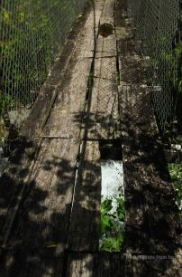 At least there's a bridge, Quetzal trail, Panama