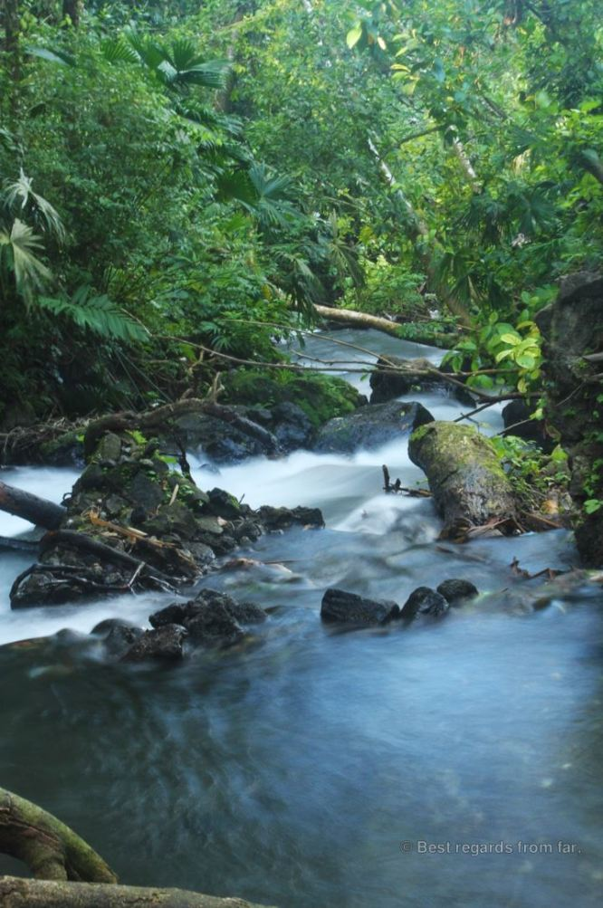 The warm river of the free natural Tabacon hotsprings, Costa Rica