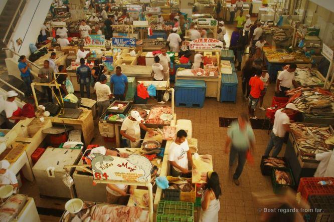 Panama City's vibrant fish market.