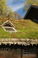 Farmhouse, Skansen, Stockholm
