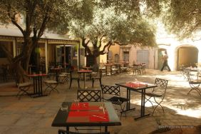 Tables ready for lunch under olive trees on a typical square in Toulon, French Riviera.