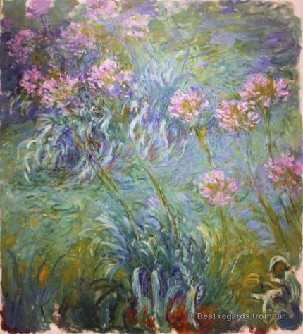 MoMA - Monet - Agapanthus