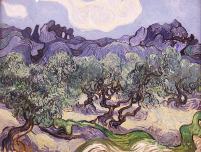 MoMA - van Gogh - The olive trees