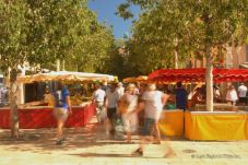 The lively market of Cour Lafayette, Toulon.