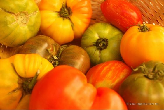 Locally grown tomatoes on the traditional market of Toulon, French Riviera.