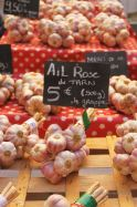 Garlic on the traditional market of Toulon, French Riviera.